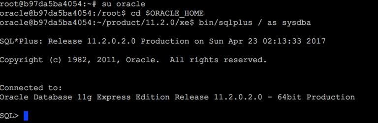 Linux 上 Docker 安装 Oracle Xe 11g 愿我如星君如月 夜夜流光相皎洁