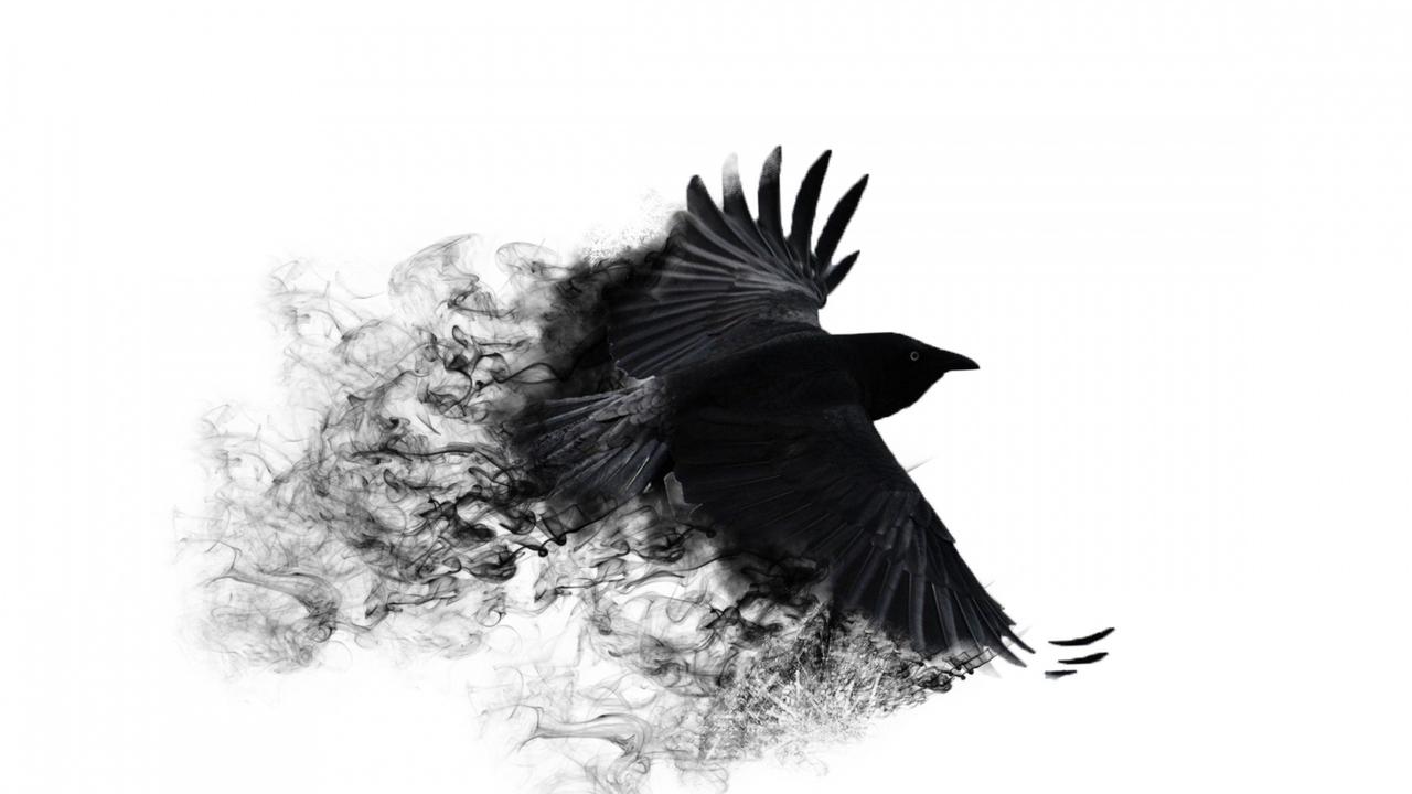 crowwingsbirdswing850551920x108074a91101.jpg