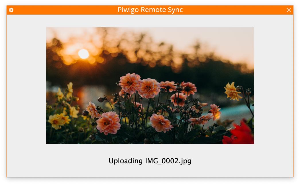 PiwigoRemoteSync3.png