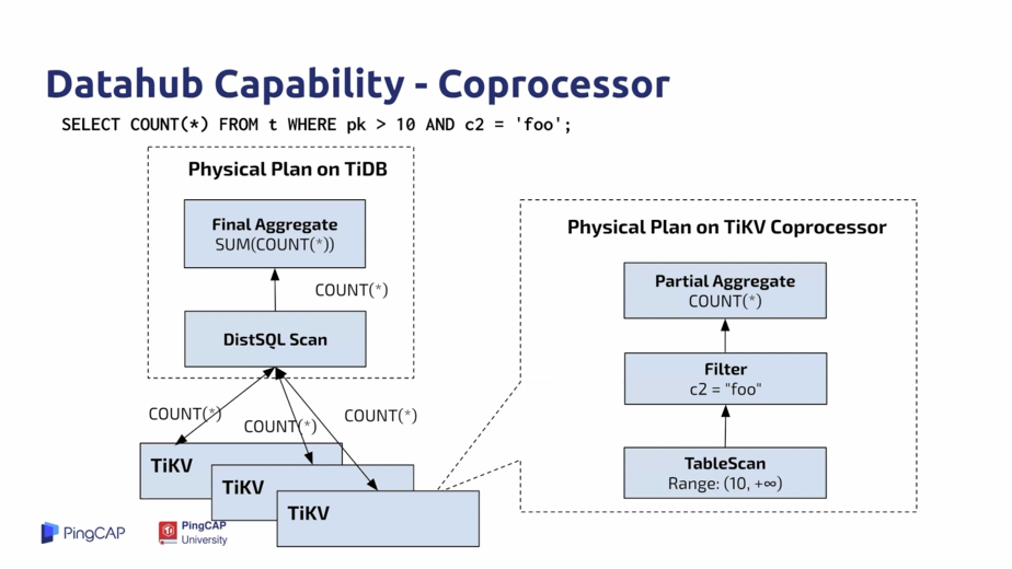 133DatahubCapabilityCoprocessor.png